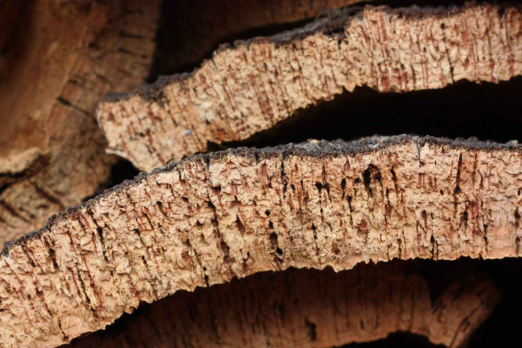 pieces of natural cork
