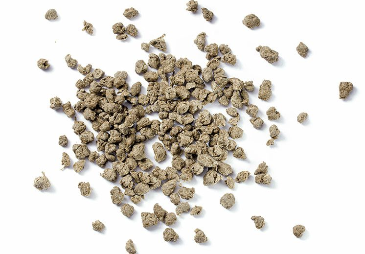 agriplast granules made from recycled plastic and grass